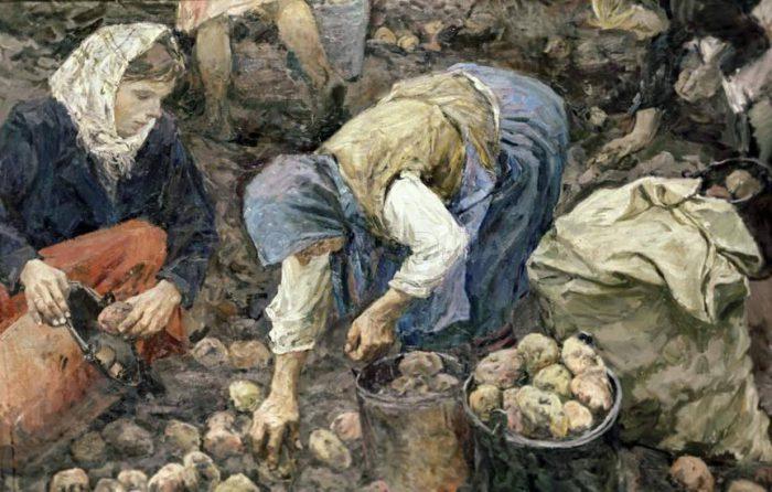 Аркадий Пластов «Сбор картофеля», 1956 © Государственный Русский музей