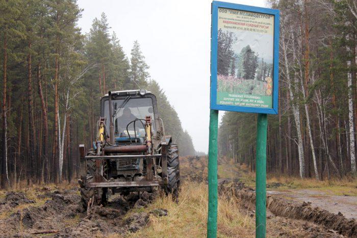 Создание новых лесных дорог — одна из противопожарных мер